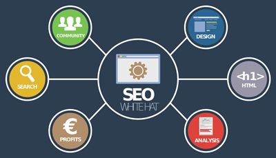 Search Engine Optimization services in Hyderabad